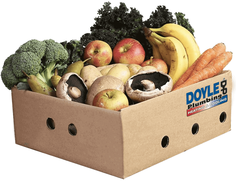 Grocery delivery box