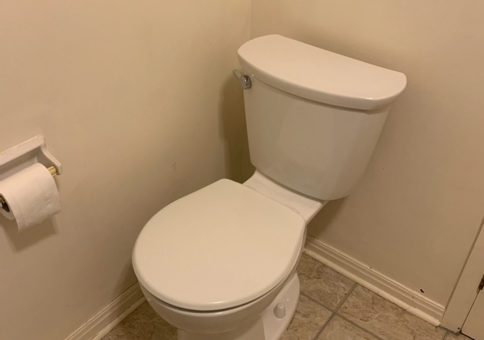 Scugog Toilet Install